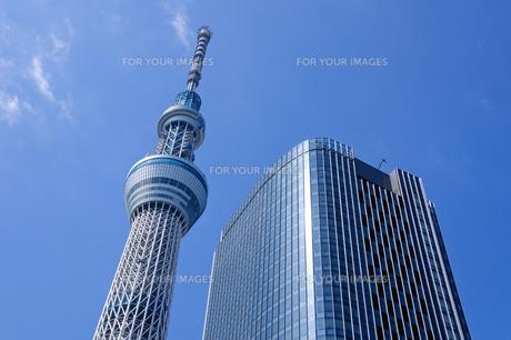 東京スカイツリーの素材 [FYI00064873]