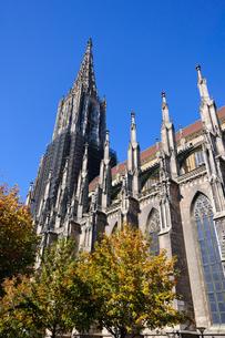 ドイツ ウルム大聖堂の素材 [FYI00064956]