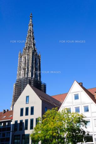 ドイツ ウルム大聖堂の素材 [FYI00064963]