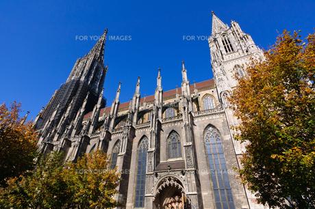 ドイツ ウルム大聖堂の素材 [FYI00064982]