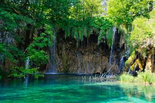 クロアチア 世界自然遺産 プリトヴィツェ湖群国立公園の写真素材 [FYI00065079]