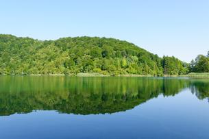 クロアチア 世界自然遺産 プリトヴィツェ湖群国立公園の写真素材 [FYI00065082]