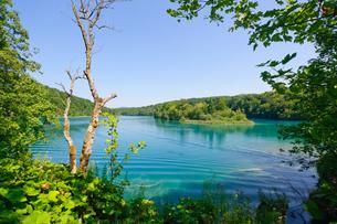 クロアチア 世界自然遺産 プリトヴィツェ湖群国立公園の写真素材 [FYI00065089]
