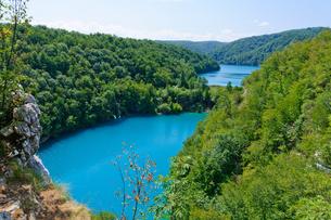 クロアチア 世界自然遺産 プリトヴィツェ湖群国立公園の写真素材 [FYI00065098]