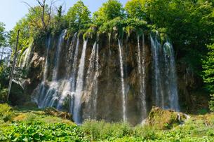 クロアチア 世界自然遺産 プリトヴィツェ湖群国立公園の写真素材 [FYI00065102]