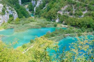 クロアチア 世界自然遺産 プリトヴィツェ湖群国立公園の写真素材 [FYI00065108]