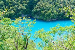 クロアチア 世界自然遺産 プリトヴィツェ湖群国立公園の写真素材 [FYI00065110]