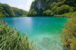 クロアチア 世界自然遺産 プリトヴィツェ湖群国立公園の写真素材 [FYI00065111]