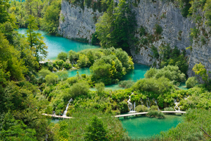 クロアチア 世界自然遺産 プリトヴィツェ湖群国立公園の写真素材 [FYI00065115]