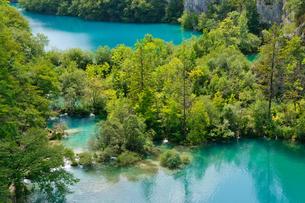 クロアチア 世界自然遺産 プリトヴィツェ湖群国立公園の写真素材 [FYI00065116]