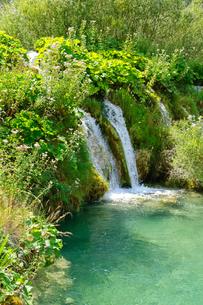 クロアチア 世界自然遺産 プリトヴィツェ湖群国立公園の写真素材 [FYI00065118]