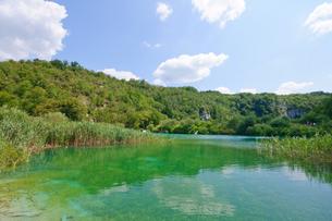 クロアチア 世界自然遺産 プリトヴィツェ湖群国立公園の写真素材 [FYI00065120]