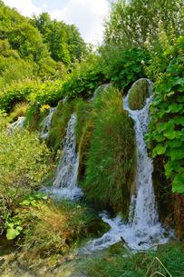 クロアチア 世界自然遺産 プリトヴィツェ湖群国立公園の写真素材 [FYI00065123]