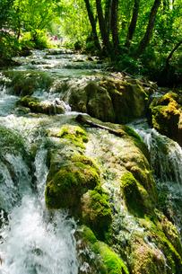クロアチア 世界自然遺産 プリトヴィツェ湖群国立公園の写真素材 [FYI00065127]