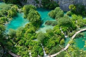 クロアチア 世界自然遺産 プリトヴィツェ湖群国立公園の写真素材 [FYI00065128]