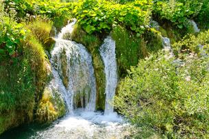 クロアチア 世界自然遺産 プリトヴィツェ湖群国立公園の写真素材 [FYI00065130]
