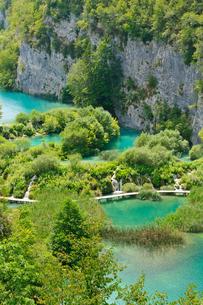 クロアチア 世界自然遺産 プリトヴィツェ湖群国立公園の写真素材 [FYI00065135]