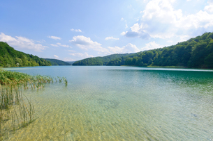 クロアチア 世界自然遺産 プリトヴィツェ湖群国立公園の写真素材 [FYI00065136]