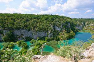 クロアチア 世界自然遺産 プリトヴィツェ湖群国立公園の写真素材 [FYI00065139]