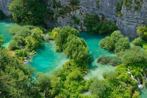 クロアチア 世界自然遺産 プリトヴィツェ湖群国立公園の写真素材 [FYI00065140]