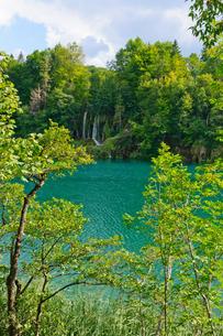 クロアチア 世界自然遺産 プリトヴィツェ湖群国立公園の写真素材 [FYI00065141]