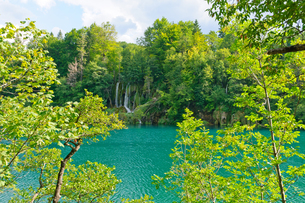 クロアチア 世界自然遺産 プリトヴィツェ湖群国立公園の写真素材 [FYI00065142]
