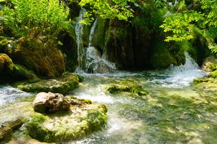 クロアチア 世界自然遺産 プリトヴィツェ湖群国立公園の写真素材 [FYI00065144]