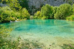 クロアチア 世界自然遺産 プリトヴィツェ湖群国立公園の写真素材 [FYI00065145]