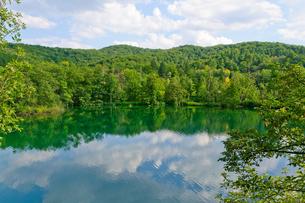 クロアチア 世界自然遺産 プリトヴィツェ湖群国立公園の写真素材 [FYI00065148]