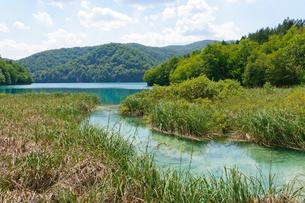 クロアチア 世界自然遺産 プリトヴィツェ湖群国立公園の写真素材 [FYI00065150]