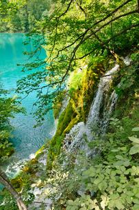 クロアチア 世界自然遺産 プリトヴィツェ湖群国立公園の写真素材 [FYI00065154]