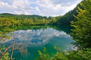 クロアチア 世界自然遺産 プリトヴィツェ湖群国立公園の写真素材 [FYI00065164]