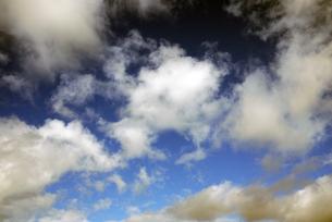 ハワイの空の写真素材 [FYI00065201]
