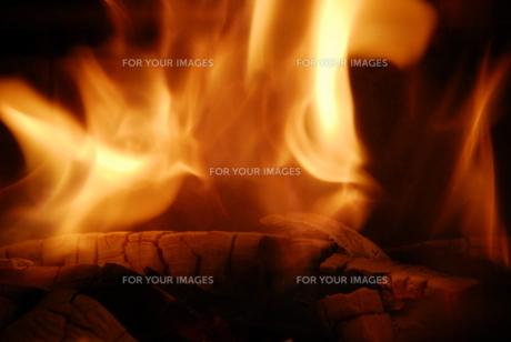炎の写真素材 [FYI00065533]