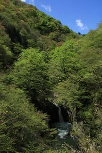 青空と滝の写真素材 [FYI00065569]