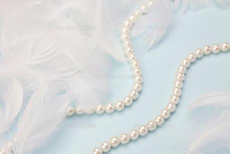 羽根と真珠の素材 [FYI00069528]