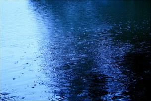 雨降りの写真素材 [FYI00069618]