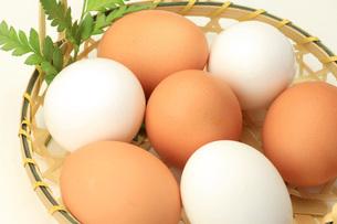 卵の写真素材 [FYI00069622]