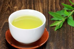 緑茶の写真素材 [FYI00069851]