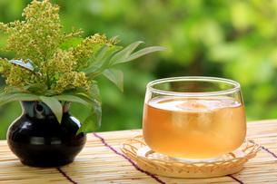 麦茶の写真素材 [FYI00069906]