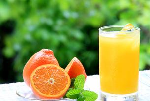 オレンジジュースの写真素材 [FYI00069909]