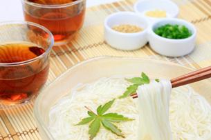 素麺の素材 [FYI00069977]