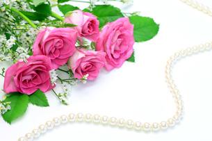 薔薇と真珠の写真素材 [FYI00070100]
