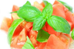 トマトとバジルのサラダの写真素材 [FYI00070194]