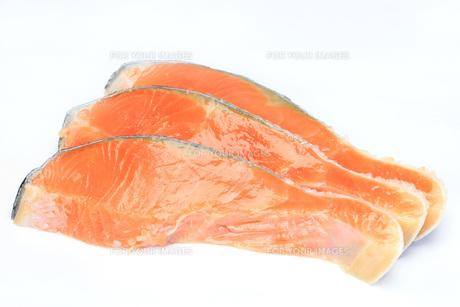 鮭の写真素材 [FYI00070266]