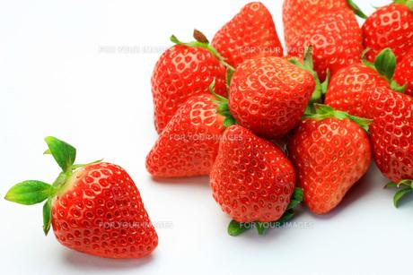 イチゴの写真素材 [FYI00070735]
