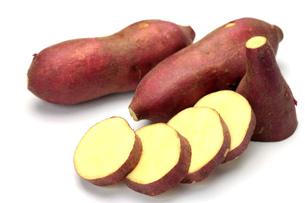 サツマイモの写真素材 [FYI00071450]