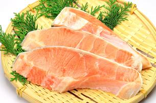 銀鮭の写真素材 [FYI00071711]