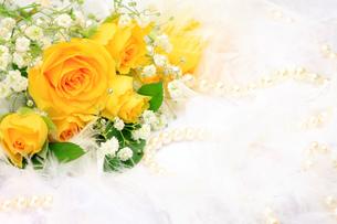 バラとパールの写真素材 [FYI00071862]