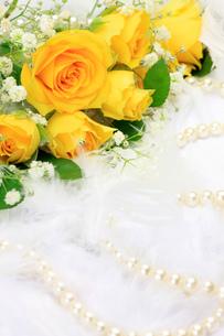 黄色いバラとパールの写真素材 [FYI00071865]